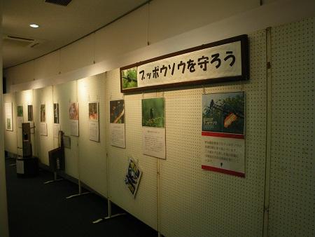 021-s.JPG
