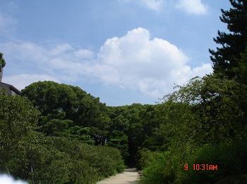 DSC02909_m.jpg