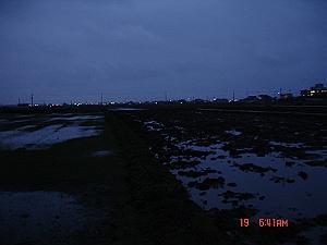 DSC05353_M.jpg