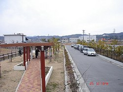 DSC06642_M.jpg