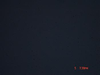 DSC08383-T.jpg