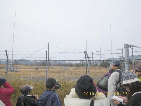IMGP2176-T.jpg